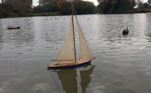 Free sail  scale 17.10.21 10