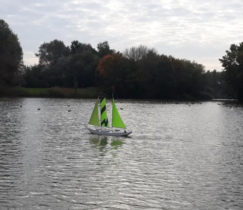 Free sail  scale 17.10.21 17